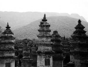 Shaolin Pagoda Forest, Henana